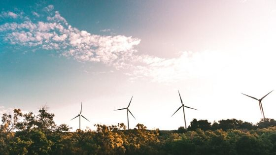 hoe milieuvriendelijk is een windmolen