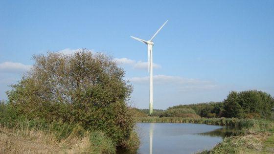 Amstelvogel_De Windvogel