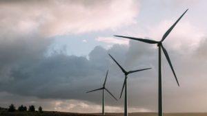 Windpark Zeewolde_Windvogel