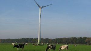 Energiespel Waddinxveen_De Windvogel