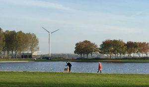Amstelvogel_De Windvogel1 (1)